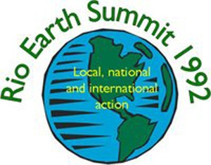 johannesburg sustainability essay