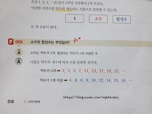 mysterymj_7964726820.jpg